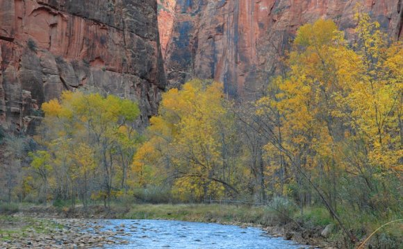 Hiking the Zion Narrows