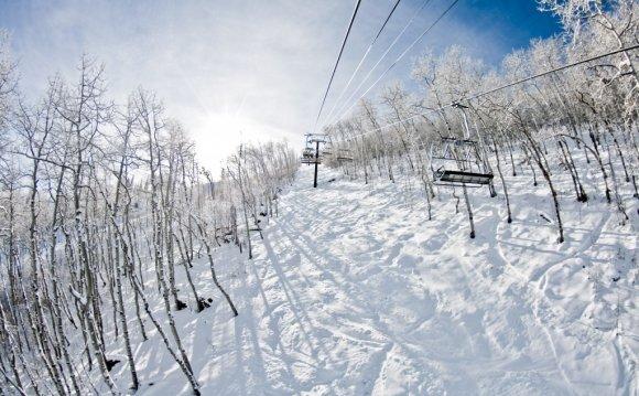 Ski Resort for Lavish Park