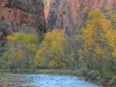 Best of Zion National Park