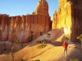 Bryce and Zion National Parks