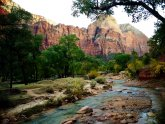 What to do Zion National Park?