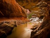 Zion National Park weather June